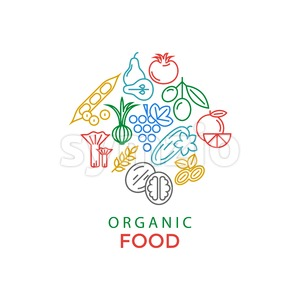Digital blue green yellow red vegetable icons set infographics drawn simple line art pattern, onion squash pear orange apple grape carrot wallnut peas Stock Vector