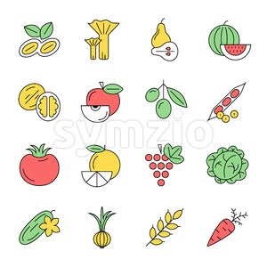 Digital green red yellow vegetable icons set infographics drawn simple line art pattern, onion squash pear orange apple grape carrot wallnut peas Stock Vector