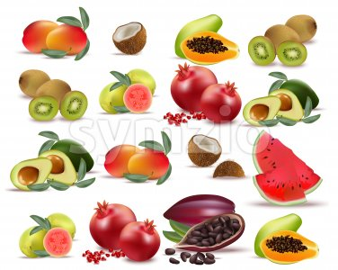 Fruits avocado, papaya, kiwi, pomegranate, fresh cocoa guava Collection set Vector illustration Stock Vector