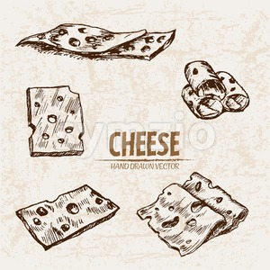 Digital vector detailed line art thin sliced cheese with holes hand drawn retro illustration collection set. Thin artistic pencil outline. Vintage ink Stock Vector