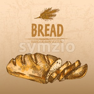 Digital color vector detailed line art fresh golden loaf of white bread slices and wheat hand drawn illustration set. Thin pencil outline. Vintage ink Stock Vector