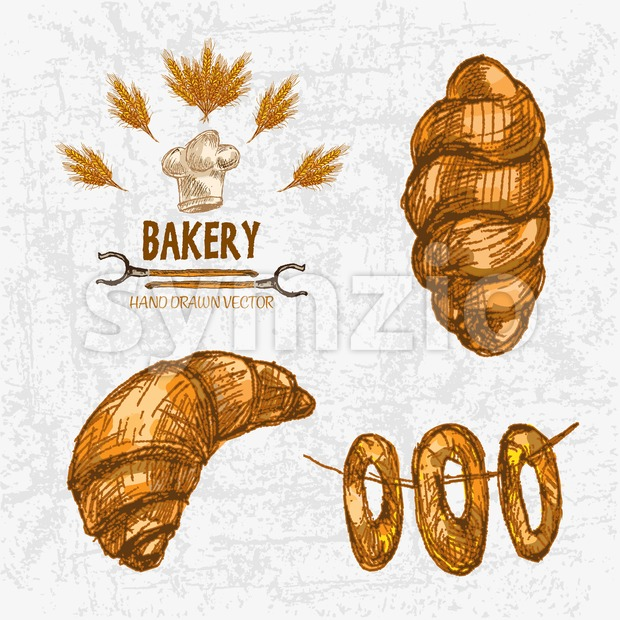 Digital color vector detailed line art golden croissant, roll, bagels on string, oven forks and chef hat hand drawn illustration set. Vintage ink Stock Vector