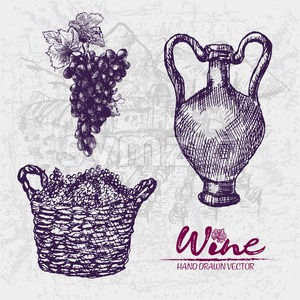 Digital color vector detailed line art grape bunches in wooden braided basket and old ancient pitcher hand drawn retro illustration set outlined. Stock Vector
