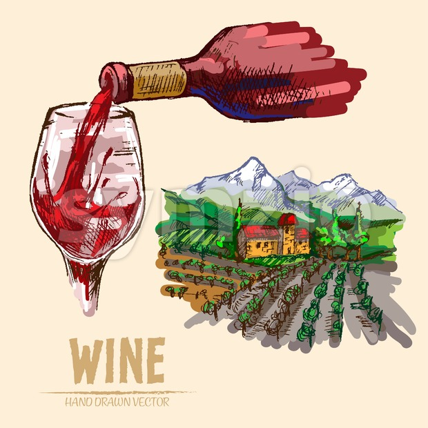 Digital vector detailed line art pouring wine and vineyard hand drawn retro illustration collection set. Thin artistic pencil outline. Vintage ink Stock Vector