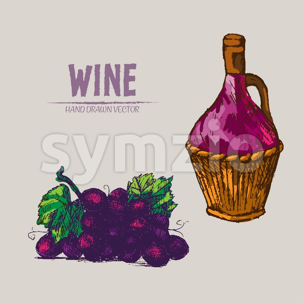 Digital vector detailed line art wine pitcher and grape bunch hand drawn retro illustration collection set. Thin artistic pencil outline. Vintage ink Stock Vector