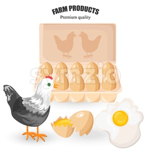Free range eggs Vector. Bunch of eggs and chicken. Eco farm products Stock Vector