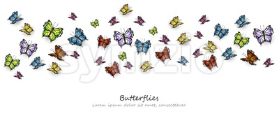 Colorful Butterflies pattern. Vector background illlustration template Stock Vector