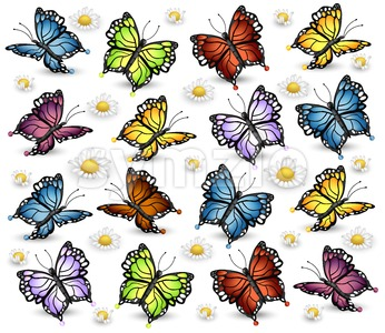 Colorful Butterflies pattern. Vector white background illlustration Stock Vector