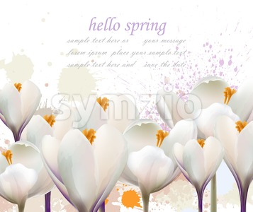 Hello spring white flowers card Vector. Watercolor splash Lovely greeting. Delicate illustration background Stock Vector