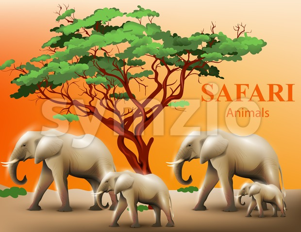 Elephants safari background Vector illustration wildlife template Stock Vector