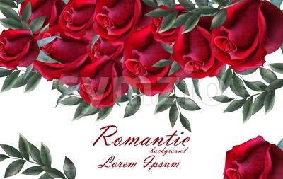 Romantic roses card Vector. Beautiful red roses flowers banner decor. Elegant decor vintage background Stock Vector