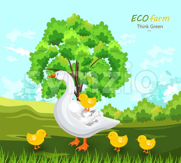 Duck and buds Vector. Eco farm concept. green summer background Stock Vector
