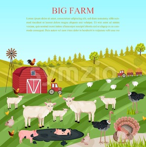 Goats, pigs and chicken animals at the farm Vector. summer green background food illustration Stock Vector