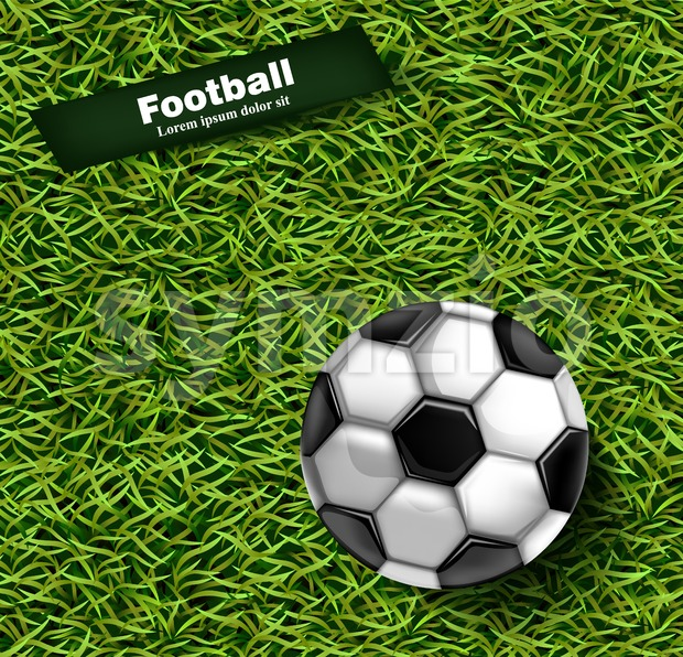 Football green grass background Vector. Realistic 3d ball detailed illustration Stock Vector