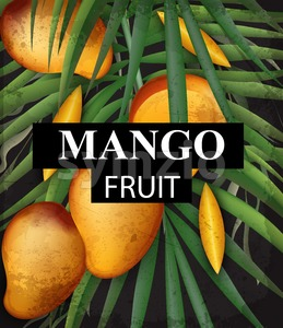 Mango card background. Growing fruits ripe harvest 3d detailed illustration Stock Vector