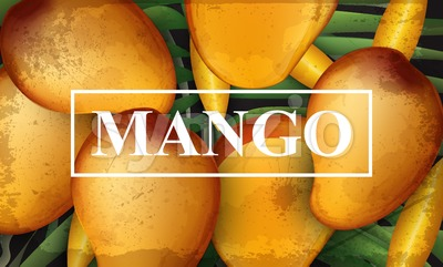 Mango banner background. Bunch of fresh sweet fruits 3d detailed illustration Stock Vector