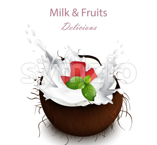 Coconut milk splash Vector. Delicious natural drink illustration Stock Vector