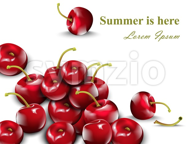 Cherry pattern Vector. Cherry fruits isolated on white background Stock Vector
