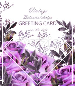 Vintage card with roses Vector. Realistic stylish purple roses. Greeting card or invitation botanical decor Stock Vector