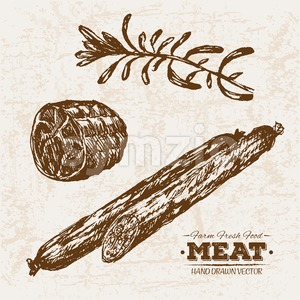 Hand drawn sketch meat salami and rosemary, farm fresh food, black and white vintage illustration Stock Vector