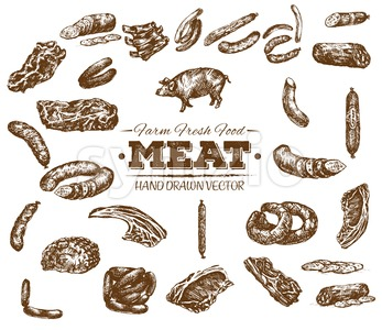 Collection 5 of hand drawn meat sketch, black and white vintage illustration Stock Vector
