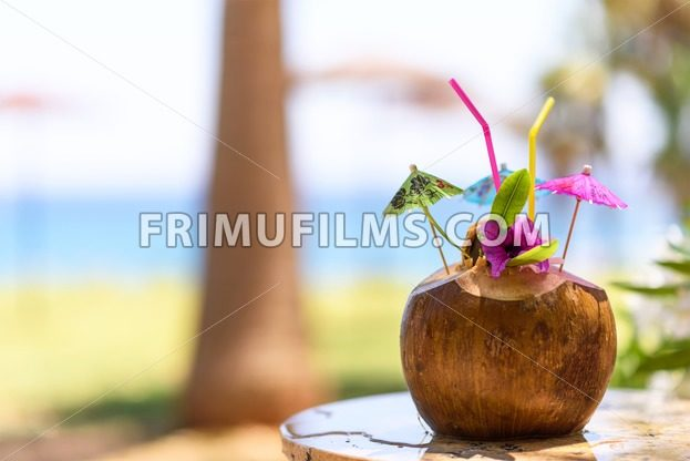 Coconut with drinking straw, umbrellas and flowers, near a palm tree at the sea - frimufilms.com