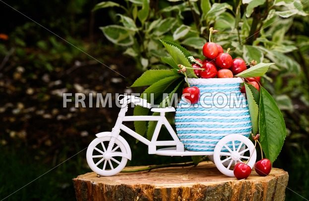Photo of a white bicycle with cherries and leaves on baggage on a tree stump - frimufilms.com