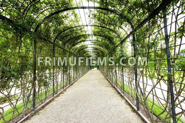 AUSTRIA, VIENNA – MAY 14, 2016: Photo view - frimufilms.com