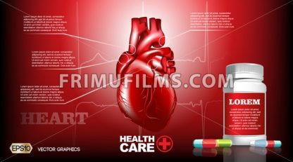 Digital Vector Infografic Realistic Human Heart. Premium quality illustration detailed organs. Health care drug pills - frimufilms.com