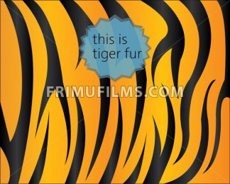 Big tiger fur texture, digital vector image - frimufilms.com