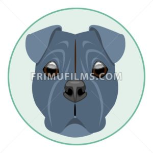 Digital vector boxer dog face, in green circle, flat style - frimufilms.com
