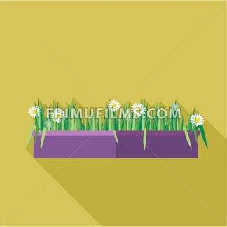 Digital vector green decorative camomile office plant with purple pot, flat style - frimufilms.com