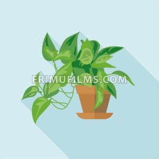 Digital vector green decorative office plant with brown pot, flat style - frimufilms.com