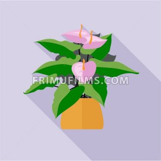 Digital vector green decorative orchid flower blooming with brown pot, flat style - frimufilms.com