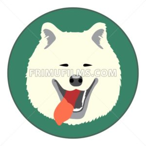 Digital vector samoyed dog face, in green circle, flat style - frimufilms.com