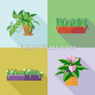 Home decorative flowers icons set. Digital vector image - frimufilms.com