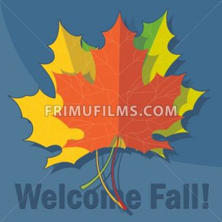 Orange, yellow and green oak leaves in autumn over blue background. Digital vector image - frimufilms.com