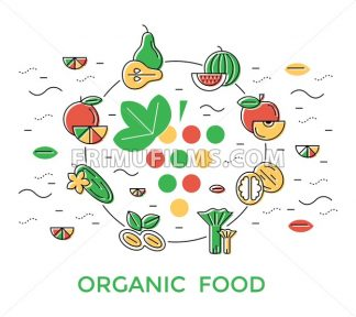 Digital green red yellow vegetable icons set infographics drawn simple line art pattern, onion squash pear orange apple grape carrot wallnut peas watermelon cabage, flat, organic vegetarian food chain - frimufilms.com