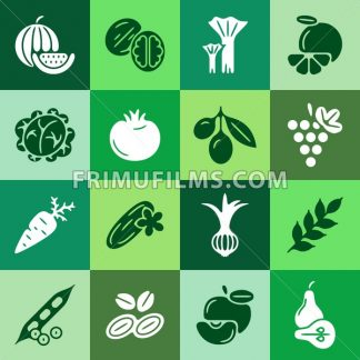 Digital green vegetable square icons set infographics drawn simple line art pattern, onion squash pear orange apple grape carrot wallnut peas watermelon cabage, flat, vegetarian food - frimufilms.com