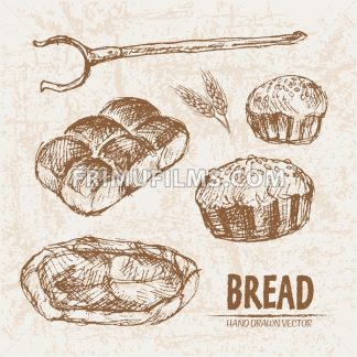 Digital vector detailed line art baked bread and dried wheat hand drawn retro illustration collection set. Thin artistic pencil outline. Vintage ink flat, engraved mill doodle sketches. Isolated - frimufilms.com