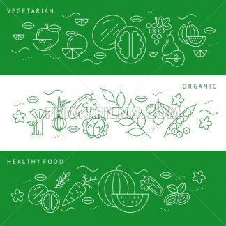 Digital vector green and white vegetable icons set infographics with drawn simple line art, onion squash pear orange apple grape carrot wallnut peas watermelon flower cabage, flat style - frimufilms.com