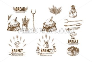 Digital vector detailed line art baked bread and dried wheat hand drawn retro illustration collection set. Thin artistic pencil outline. Vintage ink flat, engraved simple doodle sketches. Isolated - frimufilms