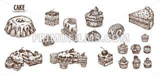 Digital vector detailed line art sliced cake and cupcakes hand drawn retro illustration collection set. Thin artistic pencil outline. Vintage ink flat, engraved design doodle sketches - frimufilms.com