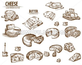 Digital vector detailed line art sliced cheese with holes and butter hand drawn retro illustration collection set. Thin artistic pencil outline. Vintage ink flat, engraved mill doodle sketches - frimufilms.com