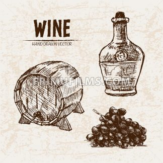 Digital vector detailed line art wine barrel, pitcher and grapes hand drawn retro illustration collection set. Thin artistic pencil outline. Vintage ink flat, engraved design doodle sketches. Isolated - frimufilms.com