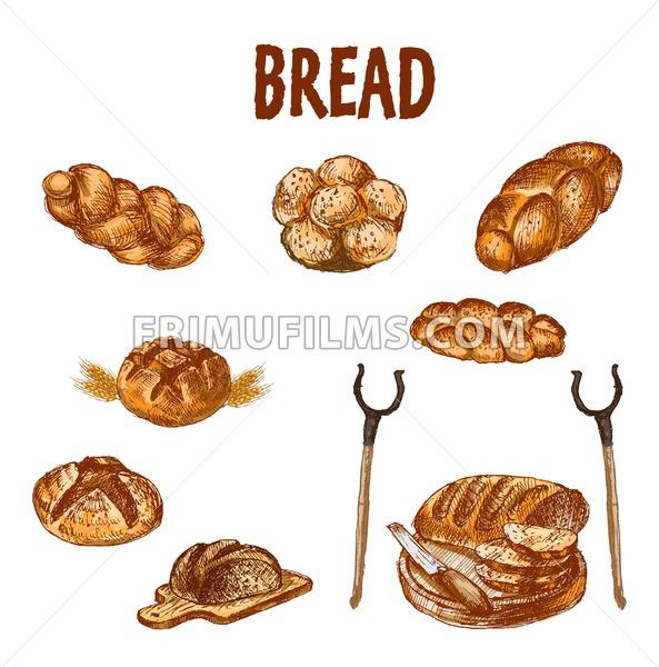 Digital color vector bundle set detailed line art golden loaf of rye bread, slices and wheat hand drawn illustration set. Thin artistic pencil outline. Vintage ink flat, engraved mill doodle sketches - frimufilms.com