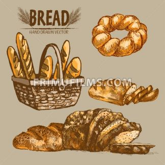 Digital color vector detailed line art baguettes in wooden basket, braided bread, slices hand drawn illustration set. Thin pencil artistic outline. Vintage ink flat, engraved doodle sketches. Isolated - frimufilms.com