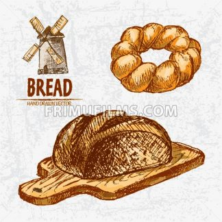 Digital color vector detailed line art golden braided and round rye bread on wooden chopping board hand drawn illustration set. Thin outline. Vintage ink flat, engraved mill doodle sketches. Isolated - frimufilms.com