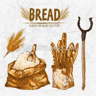 Digital color vector detailed line art golden loaves of baguettes in organic bag, sack with flour and scoop, wheat hand drawn set outlined. Vintage ink flat, engraved mill doodle sketches. Isolated - frimufilms.com
