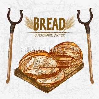 Digital color vector detailed line art golden loaves of round bread sliced on wooden cutting board, oven fork hand drawn set. Thin outline. Vintage ink flat, engraved mill doodle sketches. Isolated - frimufilms.com